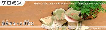ケロミン_image.jpeg